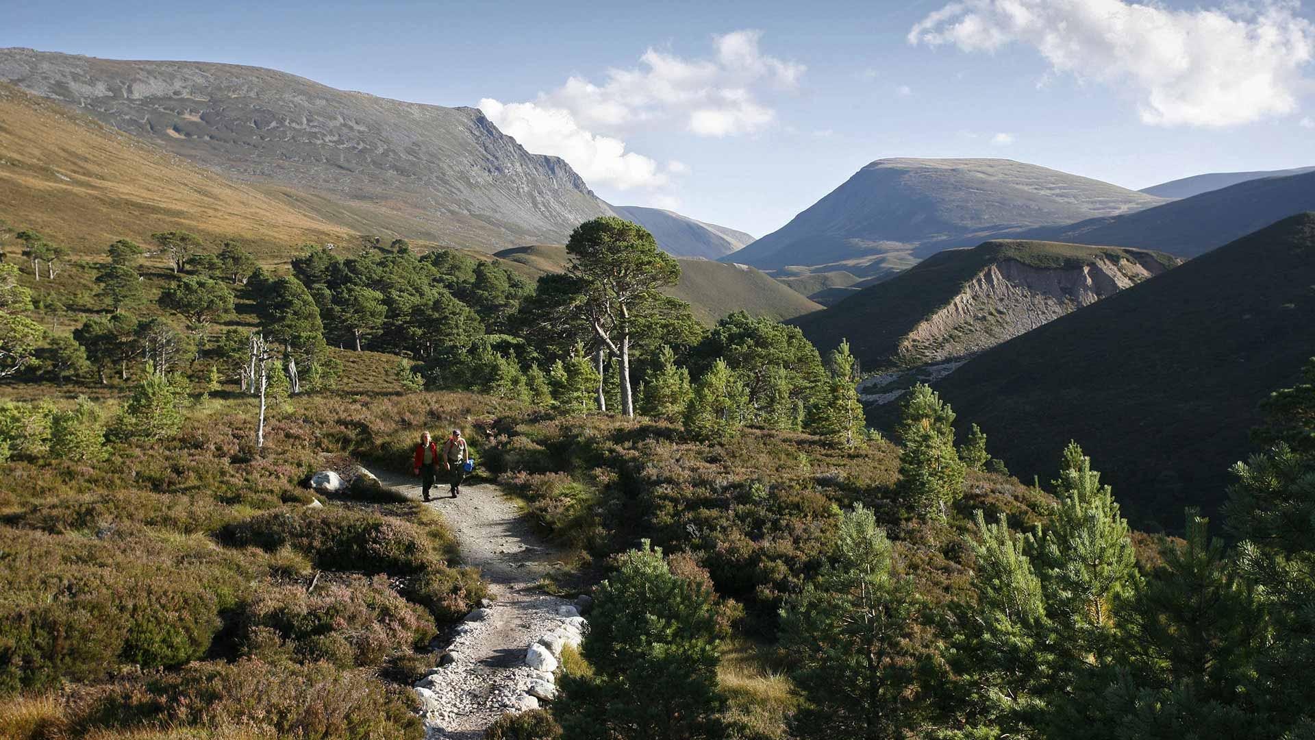 St andrews the scottish highlands 7 days 6 nights scotland self drive tours nordic visitor - Highland park wallpaper ...