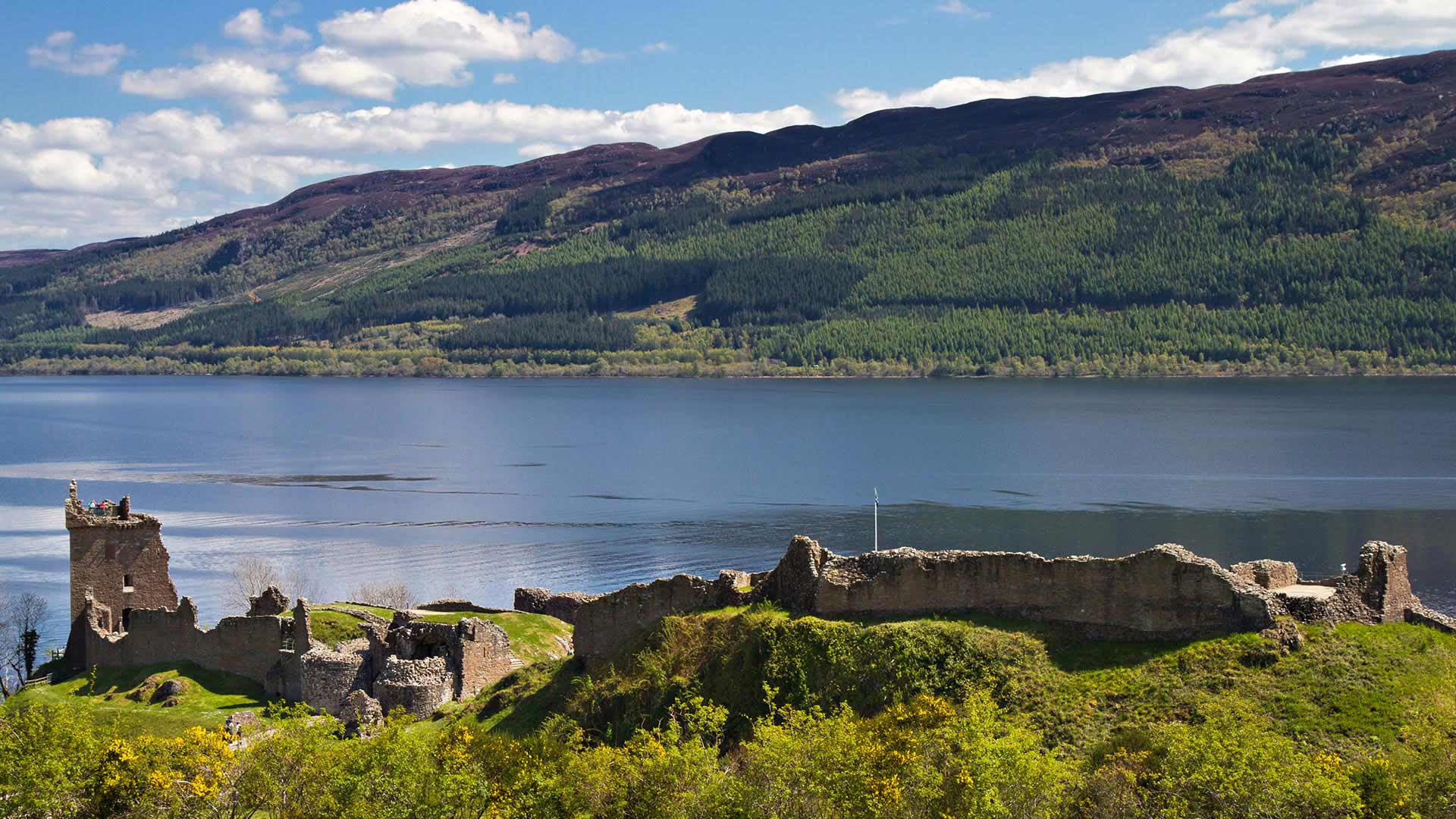 loch ness single guys Loch ness is the second largest scottish loch by he takes a single photograph before in the 1970s he formed a heel (those that portray the bad guys.
